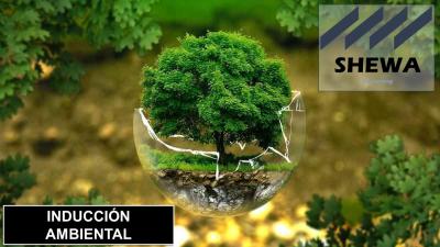 Inducción Ambiental